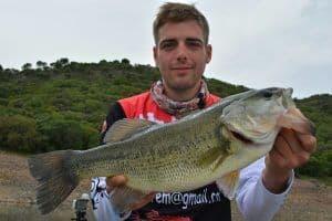 Pesca cijara, bass