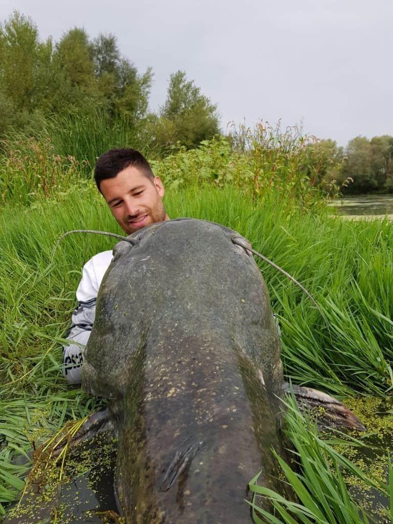 La pesca de siluros al clonk