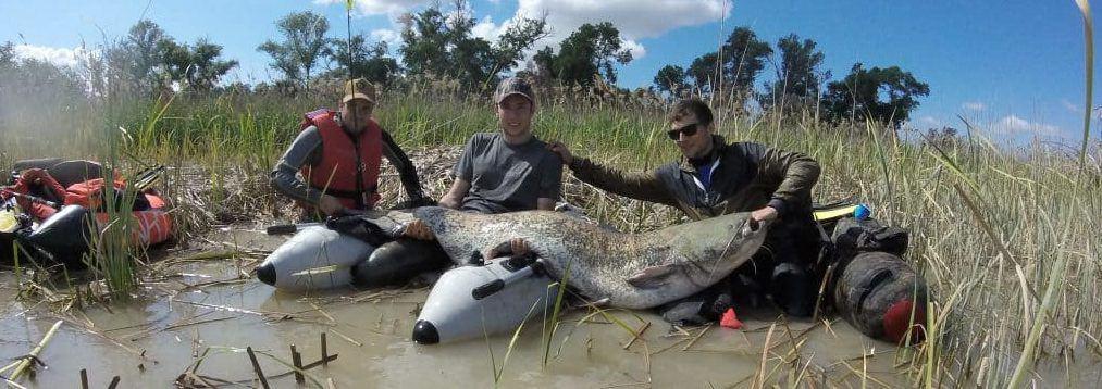 pesca de siluros en mequinenza
