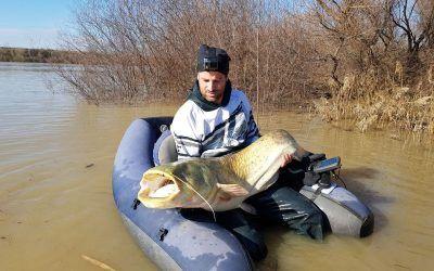 La pesca de siluros desde pato
