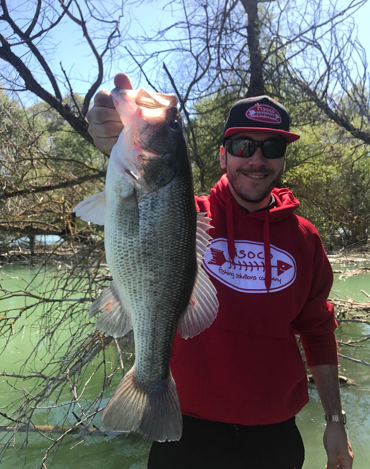 Tips para la pesca del bass en Verano