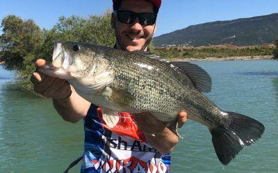 Consejos para la pesca del black bass en éste 2020