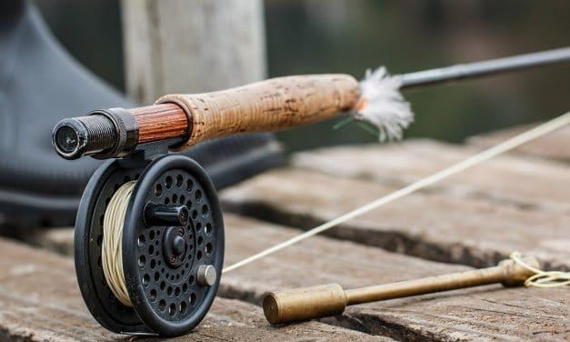 Guía completa para la pesca con mosca en éste 2020