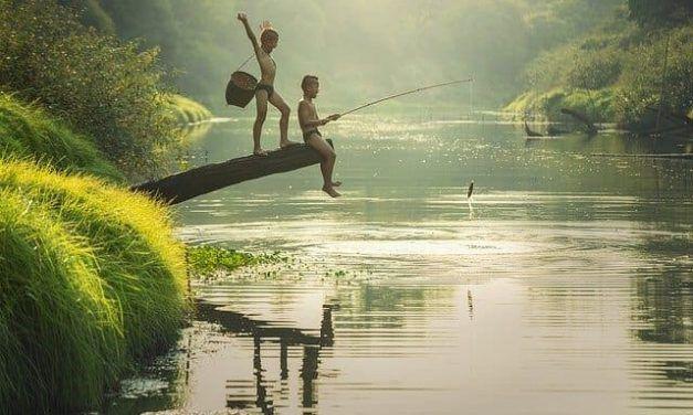 Situación de la pesca deportiva y el estado de alarma