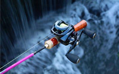 Guia de pesca sobre el Bait Finesse System 2021