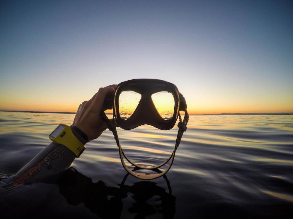 pesca submarina para principiantes