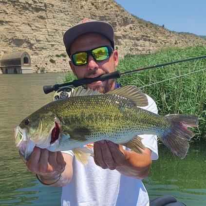 pesca de black bass en mequinenza