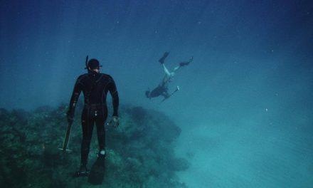 Como sacar la Licencia de pesca submarina